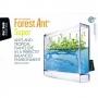 Antquarium Super Forest - mravenčí akvárium